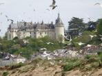 Le château de Chaumont sur Loire, prise du bateau
