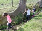 Kids puddling in the garden burn in their wellies
