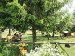 Gran jardín con mesas para poder comer en el exterior