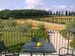 View of the Tuscany countryside from the pool terrace