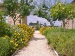 Path of apartment Margherita