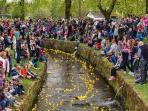 The Duck Race - part of Sttrathaven Gala week.