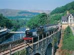 Walk across the chain bridge to Berwyn station