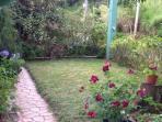 Small Prviate Garden
