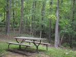 Picnic table outside with park style grill and fire pit