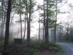 Morning mist at the Retreat