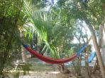 Hammock in the garden to relax