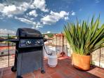 Gas BBQ on the roof terrace