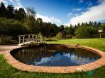 Walled garden pond