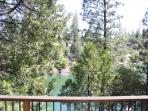 view of trees off deck