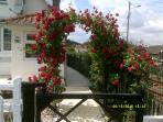 Entrance to Crossing Cottage through the rose arch