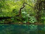 Entorno del Parque Natural Fragas do Eume
