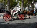 Treat yourself to a Horse and Carriage ride in Nerja
