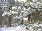 Snow cottage.