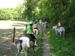 Choose from several local riding stables.