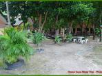Widely outdoor garden area