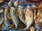 Fish ready for the barbeque. Guest picture
