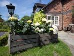 Curlew Cottage Garden Detail