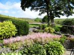 Area of the Garden overlooking the fellside that gives our barn its name !
