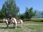 equestrian center horseback riding