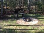 Outdoor fire ring, wood provided