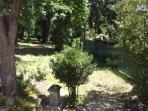 il bosco visto dal terrazzo dell'appartamento Ramo.