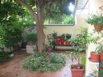 Terrace 60 m / 2 full of Mediterranean plants and trees: avokado, caparies, olive tree, canna indica
