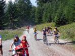 20 min by car, biking trails on the mountain Ucka