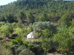 From a distance to show how secluded the Bell tent is.