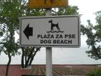 15 min walking, beach for your dogy