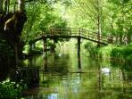 Le Marais Poitevin, notre Venise Verte, une visite incontournable durant votre séjour
