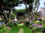 Complex Garden