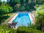 Pool view with surrounding trees for shade in the residents' garden