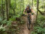 Hiking and Biking Trails in Back Yard