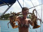 In season, we enjoy fresh lobsters for dinner as well as other sea foods. Fish and conch too.