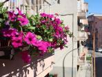 il vostro balcone in fiore.