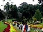 Royal Botanic Gardens, Kandy