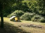 camp en clairière
