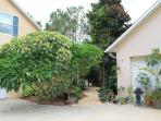 Park in the driveway and follow the tropical pathway to your charming home away from home.