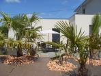 Terrasse nichée dans les palmiers