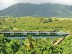 The island train tour.