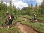 Biking trails in the Radium area