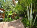 Lush outdoor space with tropical greenery