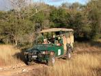 Our open Safari vehicle
