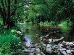 Little Dart River