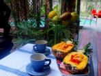 Natural fruit breakfast each morning is included, enjoy it in the kitchen or on the deck