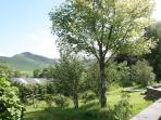 The wildlife garden outside The Byre, with Catbells beyond.