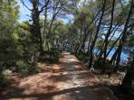 Hiking road to Soline beach