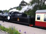The local steam train is a popular attraction, with themed events for halloween & festive holidays