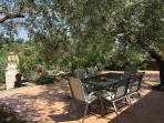 Comfortable lounging area in the shade of old olive trees